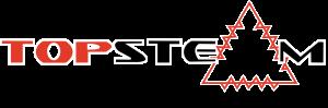 Topsteam Logo